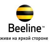 beeline_kz-normal